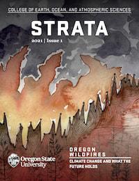Strata cover